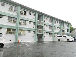 松田マンションA棟[162号室]の外観