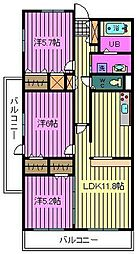 埼玉県川口市青木3丁目の賃貸マンションの間取り