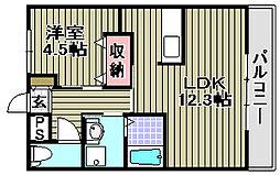 大阪府和泉市富秋町の賃貸アパートの間取り