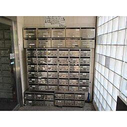 日本スタンダードビル[503号室]の外観