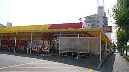 ニューライフフジたか丘店(795m)