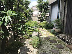 植栽が楽しめるお庭