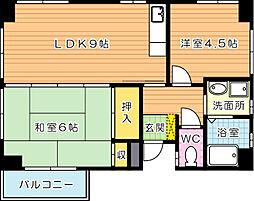 オブリックビル[5階]の間取り