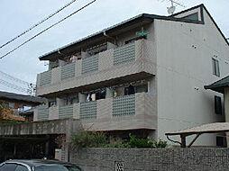 ラ・ピーヌ久米田[104号室]の外観