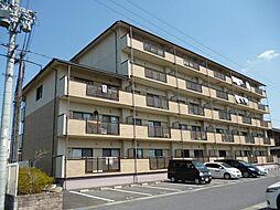 滋賀県甲賀市水口町的場の賃貸マンションの外観