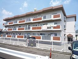 高井マンション[104号室]の外観