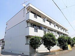 埼玉県越谷市大字大泊の賃貸マンションの外観