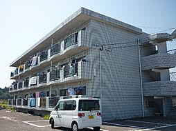 プラスハイツ須崎[303号室]の外観