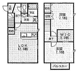 [テラスハウス] 静岡県浜松市中区文丘町 の賃貸【/】の間取り