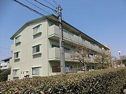 愛知県安城市横山町下毛賀知丁目の賃貸マンションの外観