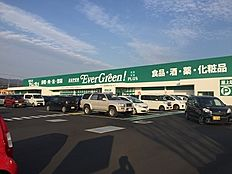 スーパーエバグリーンプラス岩出高塚店まで1185m