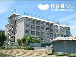 兵庫県伊丹市野間北6丁目の賃貸マンションの外観