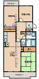 マッティーナ神戸壱番館[C-3号室]の間取り