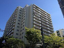 新潟県新潟市中央区万代1丁目の賃貸マンションの外観