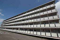広島県福山市能島3丁目の賃貸マンションの外観
