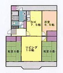 コープ野村志津[3-202号室]の間取り