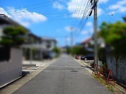 現地(2019年6月)撮影
