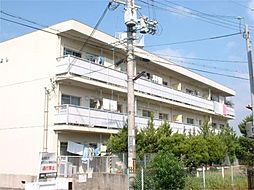 滋賀県大津市大将軍3丁目の賃貸マンションの外観
