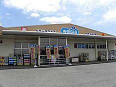 ウェルシア加古川水足店…約350m