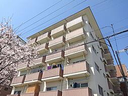 十三ハイツ[7階]の外観