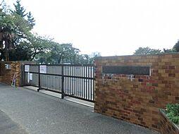 [テラスハウス] 神奈川県相模原市南区鵜野森3丁目 の賃貸【/】の外観