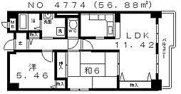 アルカディア玉造[2階]の間取り