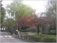 パジオン櫛原[210号室]の外観