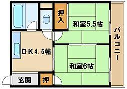 兵庫県明石市上ノ丸1丁目の賃貸マンションの間取り
