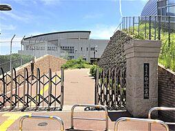 博多南駅 3,298万円
