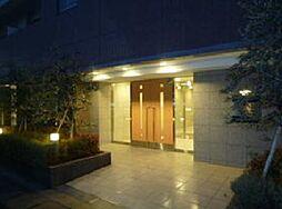 神奈川県川崎市高津区久地4丁目の賃貸マンションの外観