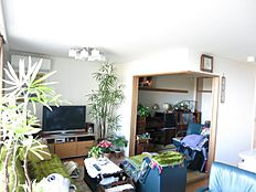 天井高があり室内も広く感じます。日当たりも良好なため植物もスクスク育つお部屋です。