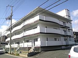 メゾン芳村[302号室]の外観
