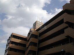 ダイアパレス丸亀[1階]の外観