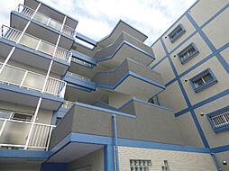秋本マンション[1階]の外観