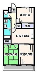 埼玉県新座市野寺5丁目の賃貸マンションの間取り