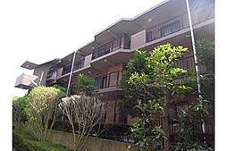 グレイスコート二俣川壱番館[2階]の外観