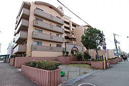 兵庫県明石市材木町の賃貸マンションの外観