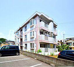 徳島県徳島市津田本町3丁目の賃貸マンションの外観