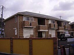 パインハイツ A棟[2階]の外観