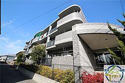 ラフィーネ松江[3階]の外観