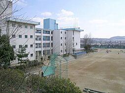 [一戸建] 兵庫県川西市緑台2丁目 の賃貸【/】の外観