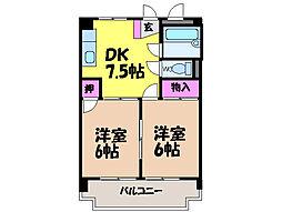 愛媛県松山市天山2丁目の賃貸マンションの間取り