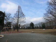 つくし野セントラルパークは、つくし野駅・すずかけ台駅近くにある公園です。公園の北側と南側には雑木林があり、散策を楽しむことができます。中央には平坦な広場があり、地域住民の憩いの空間となっています。