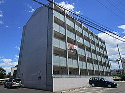 都市ガスRacoonD3〜ラクーンディースリー〜[4階]の外観