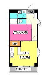 埼玉県所沢市中新井1丁目の賃貸マンションの間取り
