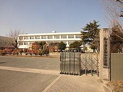 知多市立新知小学校 徒歩 約14分(約1100m)