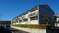 千葉県船橋市藤原3の賃貸アパートの外観