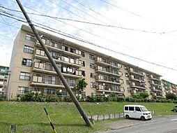 愛知県知多郡阿久比町大字宮津字新海山の賃貸マンションの外観