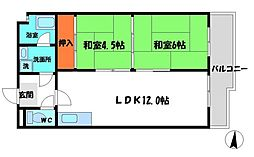 樋本マンション 4階2LDKの間取り