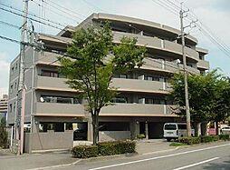 メゾン富士[305号室]の外観